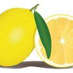 レモン1個に含まれるビタミンCの量はレモン4個分ではなくやはりレモン1個分ではないか?