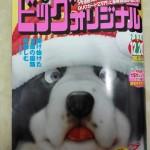 ビックコミックオリジナル 2015年 24号 感想