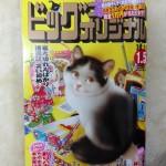 ビックコミックオリジナル 2016年 1号 お年玉プレゼントあり